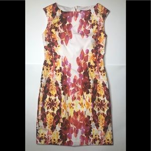 Adrianna Papell Dress Size 4P
